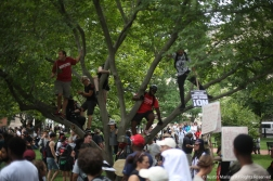 Counter prosters climb trees in Lafayette Park to see over the thousands of other protesters who were there to counter the white supremacists at the Unite the Right Rally 2
