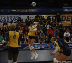 Kent State senior opposite Amy Kober hits the ball during a match against Youngstown State University.